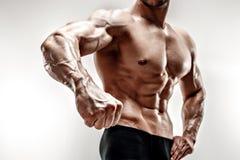 Hübscher muskulöser Bodybuilder demonstriert seine Faust und Ader, Blutgefäße Atelieraufnahme auf weißem Hintergrund Stockbilder