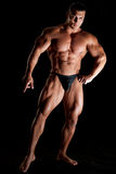 Muskulöser Bodybuilder Lizenzfreie Stockbilder