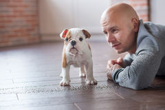 Hübscher mutiger Mann mit Welpenenglischbulldogge Stockbilder