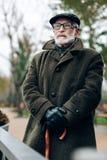 Hübscher reifer Mann, der das Gehen in Park genießt lizenzfreie stockbilder