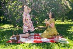 Hübscher Stift zwei herauf die Damen, die nettes Picknick im Stadtpark an einem sonnigen Tag zusammen haben Freundinnen genießen  lizenzfreies stockfoto