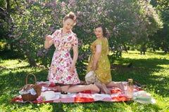 Hübscher Stift zwei herauf die Damen, die nettes Picknick im Stadtpark an einem sonnigen Tag zusammen haben Freundinnen genießen  lizenzfreie stockbilder