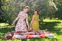 Hübscher Stift zwei herauf die Damen, die nettes Picknick im Stadtpark an einem sonnigen Tag zusammen haben Freundinnen genießen  stockbild