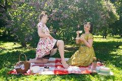 Hübscher Stift zwei herauf die Damen, die nettes Picknick im Stadtpark an einem sonnigen Tag zusammen haben Freundinnen genießen  stockfotos
