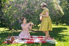 Hübscher Stift zwei herauf die Damen, die nettes Picknick im Stadtpark an einem sonnigen Tag zusammen haben Freundinnen genießen  lizenzfreies stockbild