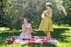 Hübscher Stift zwei herauf die Damen, die nettes Picknick im Stadtpark an einem sonnigen Tag zusammen haben Freundinnen genießen  lizenzfreie stockfotos
