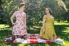 Hübscher Stift zwei herauf die Damen, die nettes Picknick im Stadtpark an einem sonnigen Tag zusammen haben Freundinnen genießen  lizenzfreie stockfotografie
