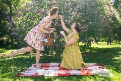 Hübscher Stift zwei herauf die Damen, die nettes Picknick im Stadtpark an einem sonnigen Tag zusammen haben Freundinnen genießen  stockfoto