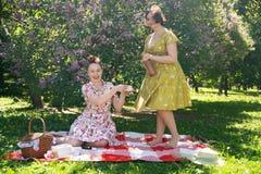 Hübscher Stift zwei herauf die Damen, die nettes Picknick im Stadtpark an einem sonnigen Tag zusammen haben Freundinnen genießen  stockfotografie