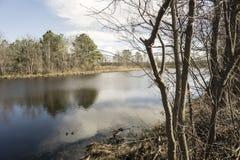 Hübscher Teich Lizenzfreies Stockfoto