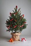 Hübscher Weihnachtsbaum mit einem Geschenk Stockfoto