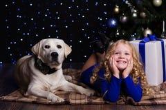 Hübsches Kindermädchen mit Hund zu Hause nahe Weihnachten Lizenzfreies Stockbild
