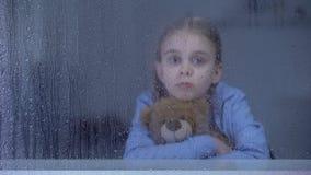 Hübsches kleines Mädchen, das Teddybären hinter dem regnerischen Fenster, schüchternd, Einsamkeit umarmt ein stock video