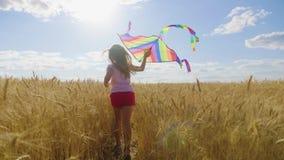 Hübsches Mädchen, das mit Drachen auf dem Weizengebiet am Sommertag spielt Kindheit, Lebensstilkonzept stock video footage