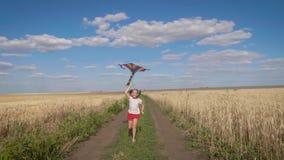 Hübsches Mädchen, das mit Drachen auf dem Weizengebiet am Sommertag spielt Kindheit, Lebensstilkonzept stock video