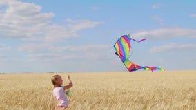 Hübsches Mädchen, das mit Drachen auf dem Weizengebiet am Sommertag spielt Kindheit, Lebensstilkonzept stock footage