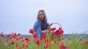 Hübsches Mädchen des Porträts, das auf dem Mohnblumengebiet erfasst Blumen im Weidenkorb geht Verbindung mit Natur Gr?n und stock video