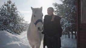 Hübsches Mädchen geht mit Pferd im Winterweg und trägt Tore ein Junge Frau, die ihr Pferd mit seiner Hauptkragenunterhaltung führ stock video footage