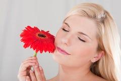 Hübsches Mädchen mit roter Blume Lizenzfreie Stockfotografie