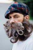 Hübsches Porträt von einem tapferen Scot mit einem erstaunlichen Bart und einem Schnurrbart kräuselt sich in der ungarischen Art lizenzfreie stockbilder