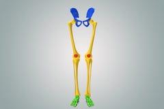 Hüftgelenke mit den Beinen stock abbildung