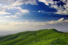 Hügel Stockbilder