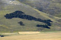 Hügel Stockfotografie