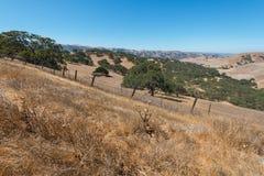 Hügel Stockfoto