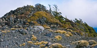 Hügel abgedeckt mit Felsen und Unterholz Lizenzfreies Stockfoto