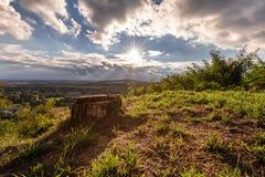 Hügel badete im Sonnenschein und in einem Baumstumpf Stockfotos