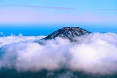 Hügel bedeckt in der Morgenwolke lizenzfreies stockbild