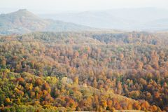 Hügel bedeckt mit gelbem Wald stockbilder