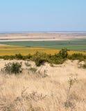 Hügel bei Ghioroc Arad Romania Stockfotografie