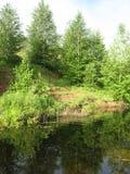 Hügel in dem Fluss Stockbilder