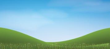 Hügel des grünen Grases mit blauem Himmel Abstrakter Hintergrundpark und im Freien Lizenzfreies Stockbild
