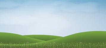 Hügel des grünen Grases mit blauem Himmel Abstrakter Hintergrundpark und im Freien Stockbilder