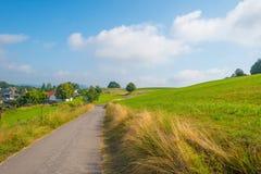 Hügel des Nationalparks Eifel im Sonnenlicht Stockbild