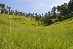 Hügel, die Pakistan wandern Lizenzfreie Stockbilder