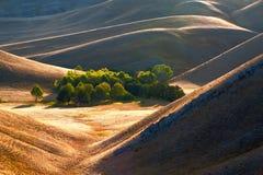Hügel am Ende eines Sommers. Stockbild