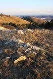 Hügel im Frühjahr Lizenzfreies Stockbild