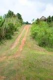 Hügel, Khun Namyen Ansicht-Punkt, Mae Wong nationales PA Lizenzfreies Stockbild