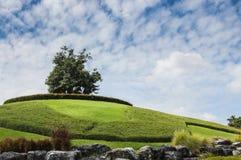 Hügel lanscape Stockfoto