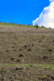 Hügel mit blauem Himmel lizenzfreie stockbilder