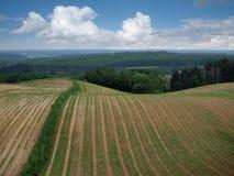 Hügel mit Feld und Wald Stockfotos