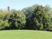 Hügel mit frischem Schnitt-Rasen Stockfotografie