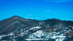 Hügel mit Schnee und Bäumen Stockfotos