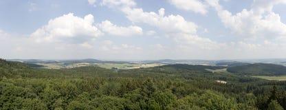 Hügel mit Wald Stockbilder
