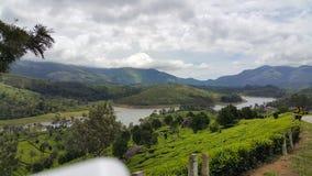 Hügel in Munnar, Kerala, Indien lizenzfreies stockbild