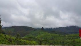 Hügel in Munnar, Kerala, Indien Stockbilder