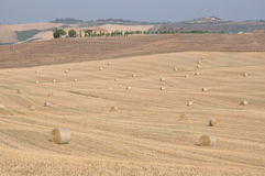 Hügel nach der Ernte Val d Orcia, Toskana Lizenzfreie Stockfotografie